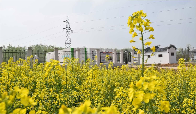 龙8国际网址-安徽蚌埠五河县辛集镇污水处理站项目